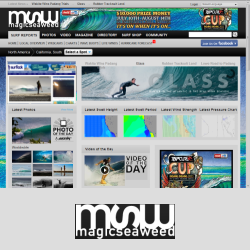 magicseaweed.com surf report